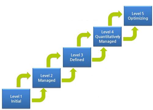 Maturity Assessment Model